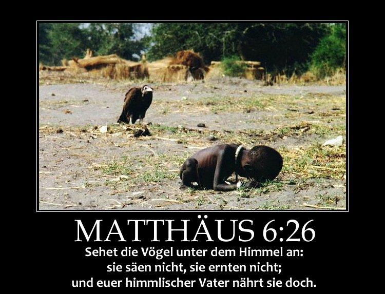 Matthew-6_26_DE